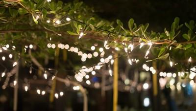 Instalação de Iluminação de Jardins Preço Cotia - Instalação de Iluminação Especial