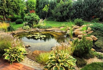 Reforma de Jardins Tatuapé - Reforma de Jardins