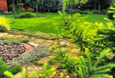 Serviço de Reforma de Jardins Aclimação - Reforma de Jardins